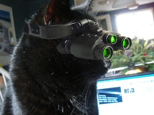 Kittys-Night-Vision-Goggles
