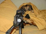 dog-with-gun